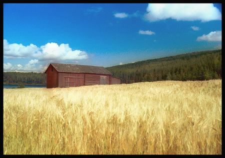 """Red Barn, Oat Field - Sweden"""